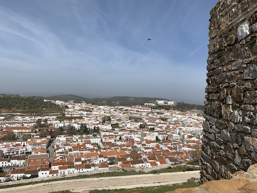 aracena city