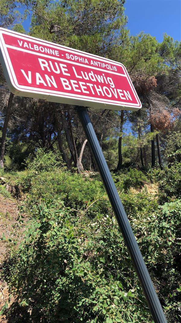 CEA Skema Road Sign