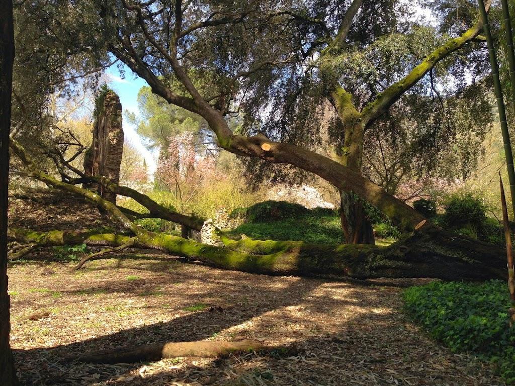 Ninfa Gardens Excursion with CEA