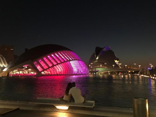 La Ciudad de Artes y Las Ciencias Valencia