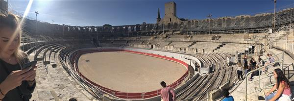 MOJO Blog Post #4 - Arels Arena