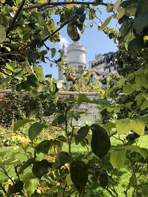 musee montmartre3