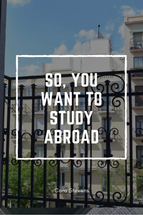 So-You-want-to-study-abroad-480x720