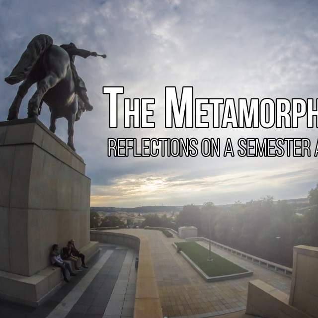 The-Metamorphosis-640x640