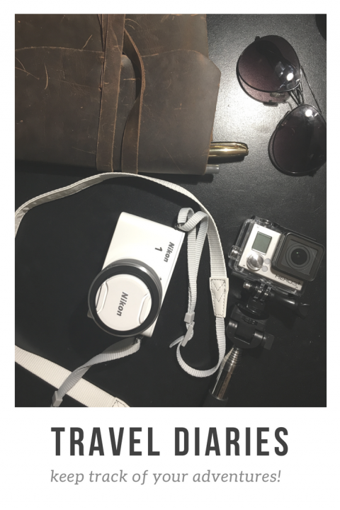 travel-diaries-480x720