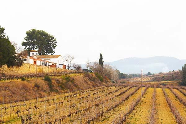 Penedès Wine Country