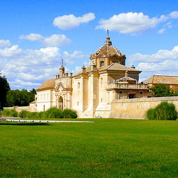 Study + Internship in Seville